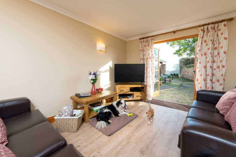 A dog friendly property at Cofton