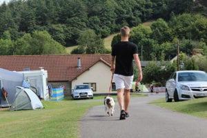 Dog Friendly Campsite Devon