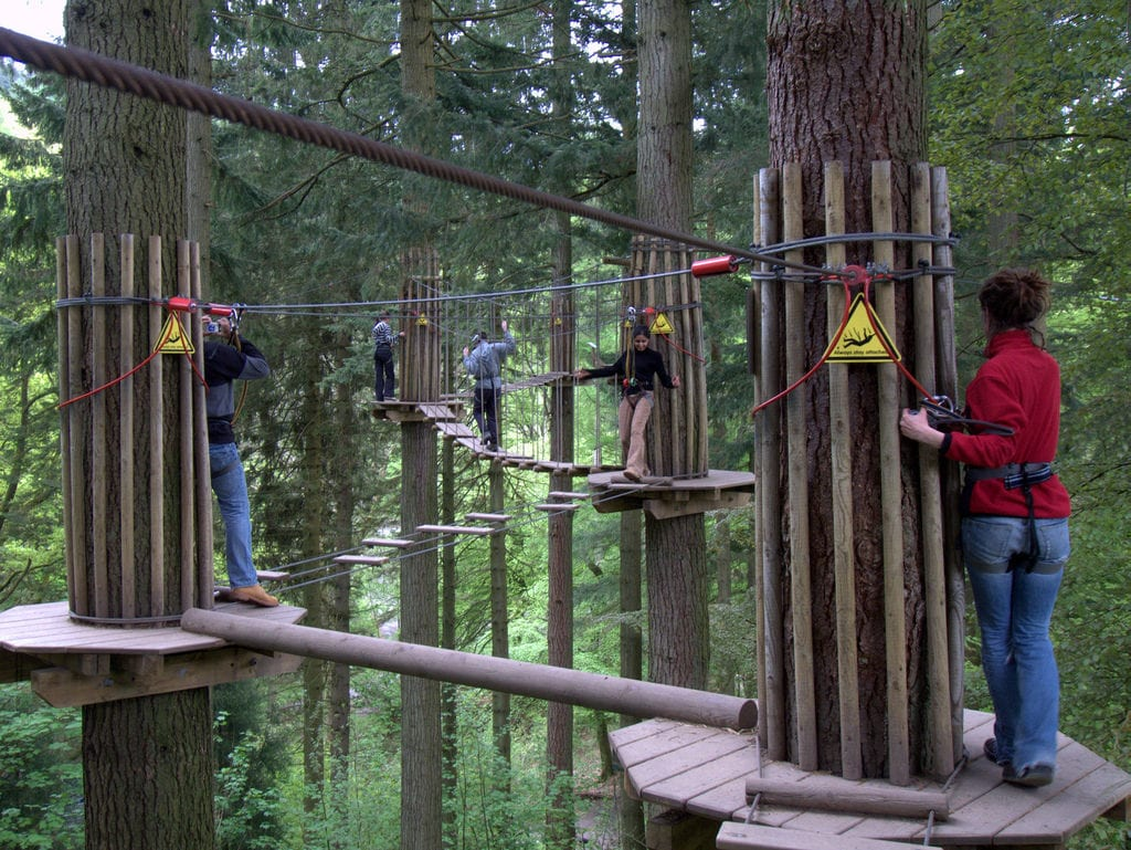 Go Ape at Haldon Forest on a Caravan Holiday at Cofton