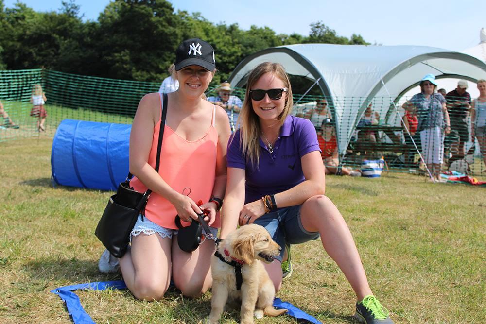 Cofton Dog Show American Car Show Weekend dog friendly holidays