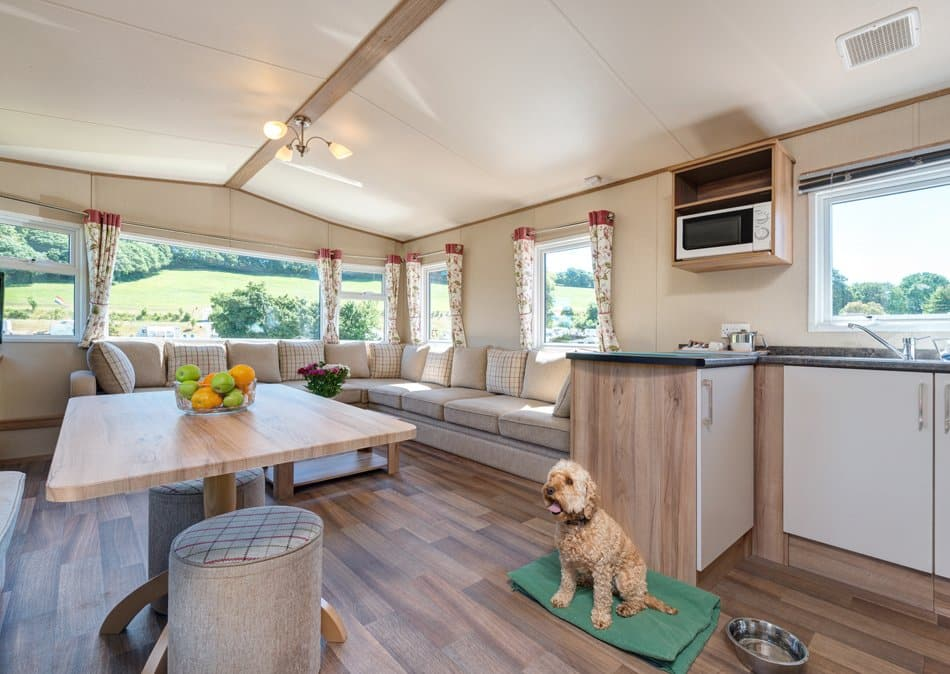 Exe Dog Friendly Caravan 2