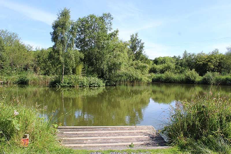 Carp Fishing lakes