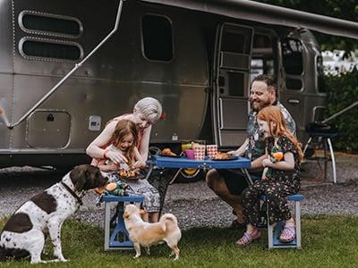 dog friendly camping in devon